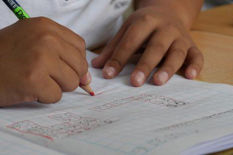 Inscrições / Renovações Creche e Pré-Escolar 2020/21